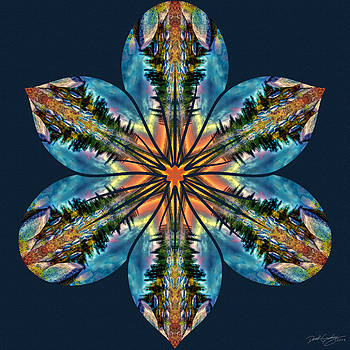 Nature's Mandala 59 by Derek Gedney