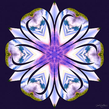 Nature's Mandala 60 by Derek Gedney
