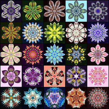 Nature's Mandala Page 01 by Derek Gedney