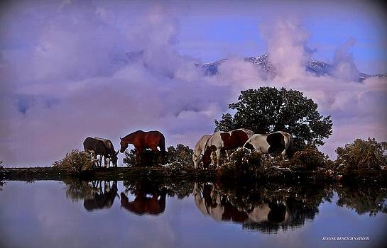 Nature's Mirror  by Jeanne  Bencich-Nations