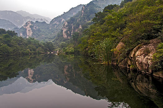 Qing  - Natures Mirror