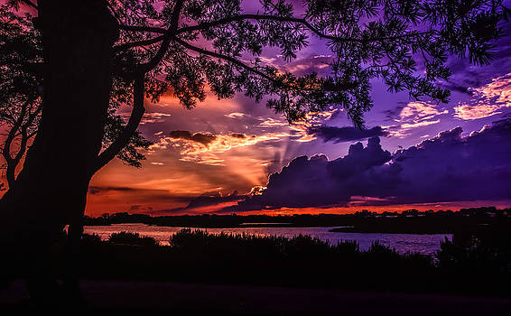 Nature's Perfection by Linda Karlin