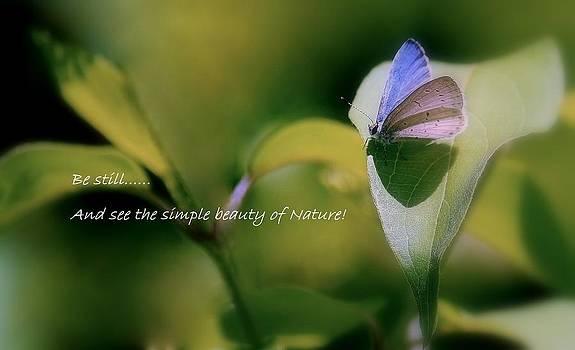 Rosanne Jordan - Natures Simple Beauty