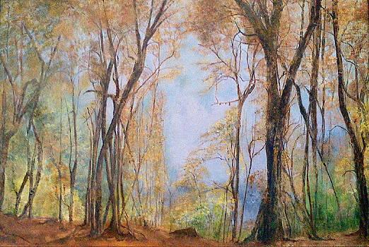 Shan Ungar - Natures Window