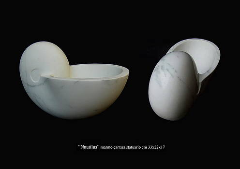 Nautilus by Francesca Bianconi