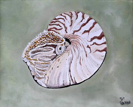 Nautilus by Yabette Swank