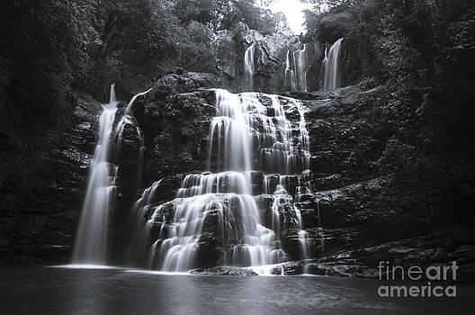 Oscar Gutierrez - Nauyuca Falls Costa Rica