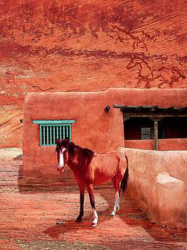 Navajo Horse by Ric Soulen