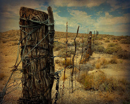 Terry Eve Tanner - Navajo Nation