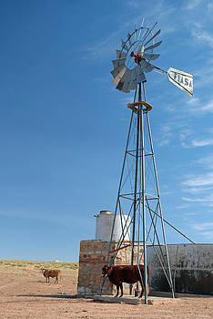 Jeff Brunton - Navajo Windmill 1