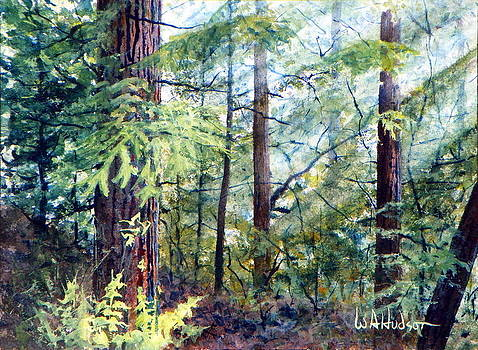 Navarro River Redwoods by Bill Hudson