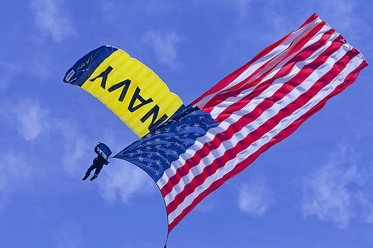 Navy Seal Leap Frogs US Flag by Donna Corless