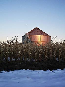 NE Grain Bin by Kelli Chrisman
