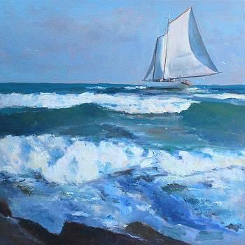 Randall Cogburn - Near Shore