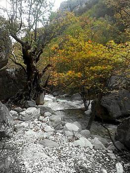 Near The Stream by Ioanna Papanikolaou
