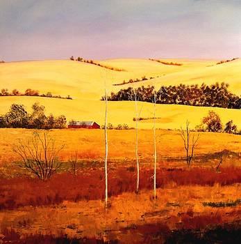 Nebraska Plains by William Renzulli