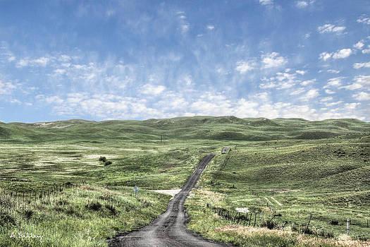 Nebraska Sandhills by Andrea Kelley