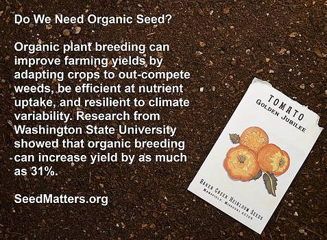 Need Organic Seed by Jon Simmons