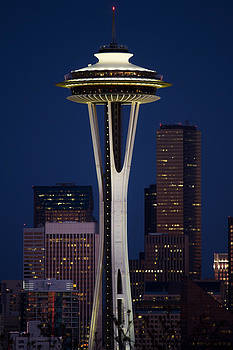 Needle at Night by Julie Jamieson