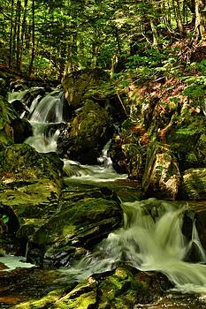 Needle Shop Brook by Naturally NH
