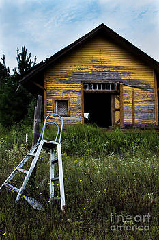Neglect in Yellow by Michelle Burkhardt
