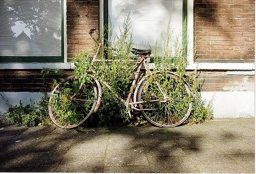Neglected Bike by Heather Gordon