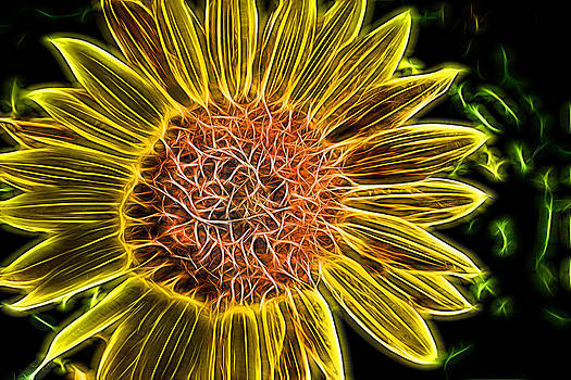 Alan Hutchins - Neon Sunflower Painting