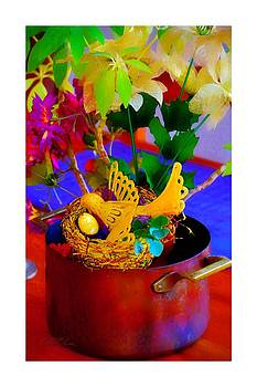 Nesting Pot by Sharon  Lavoie
