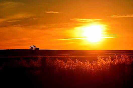Nestor's Sunrise by Clarice  Lakota