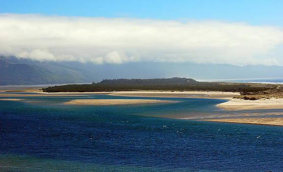 Netarts Bay by Mamie Gunning