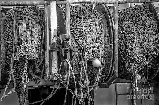 Nets on Reel by John MilitaryFire