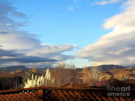 Nevada Clouds and Beauty by Phyllis Kaltenbach