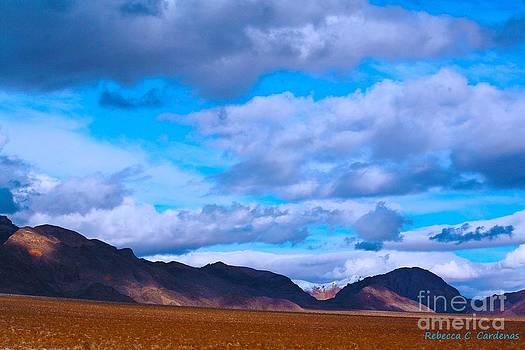 Nevada Sky Line by Rebecca Christine Cardenas