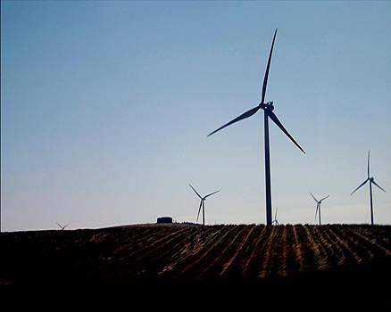 Nevada Windmills by Misty Ann Brewer