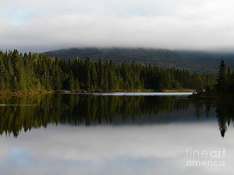 Never Ending Pond by Glass Slipper