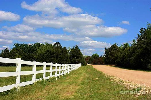 Never Ending White Fence by Robert D  Brozek