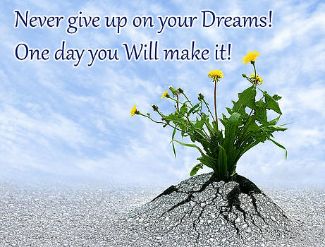 Dreamland Media - Never give up on your dreams one day you will make it