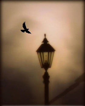 Nevermore by Charlene Murray Zatloukal