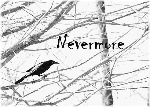 Nevermore by Cherie Haines