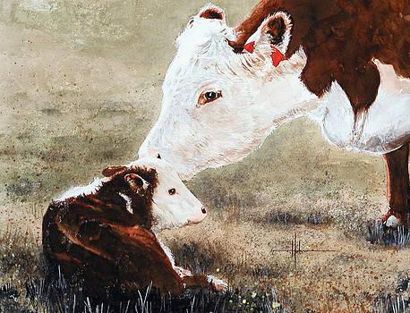 New Calf  by Richard Hahn