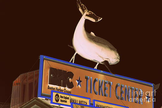 New England Aquarium Ticket Center by Ellen Ryan