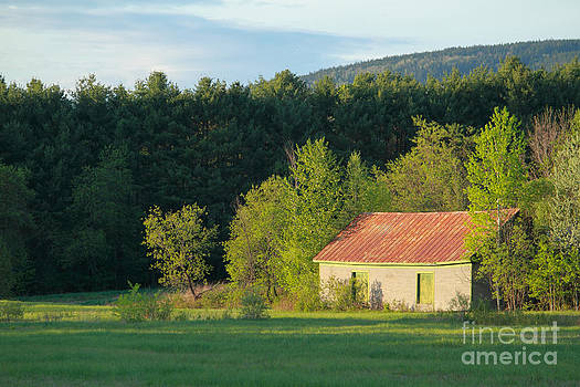 New England Barn in Spring by Denise Lilly