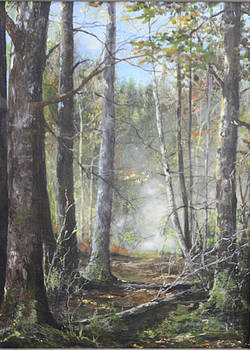 New England Woods by Cae Wuerth