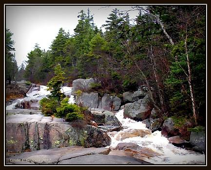New Hampshire Waterfall by Linda Seifried