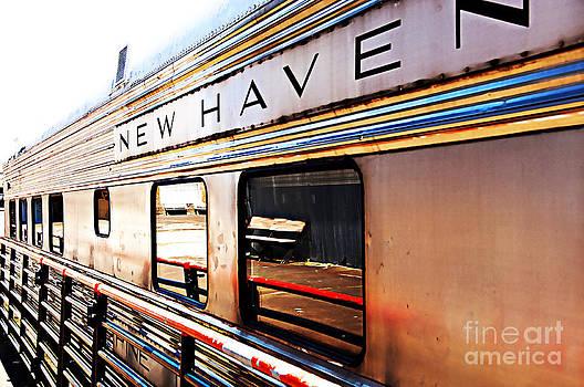 Nancy Stein - New Haven