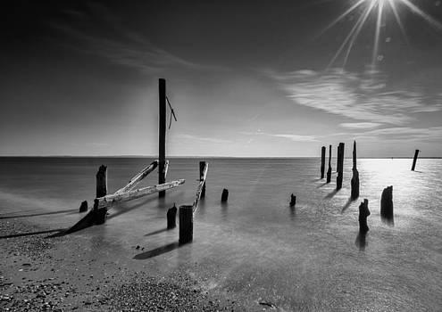 New Horizon by Johnny Lam