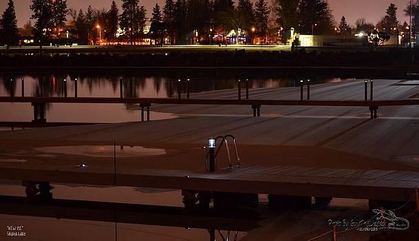 Guy Hoffman - NEW ICE Skaha Lake