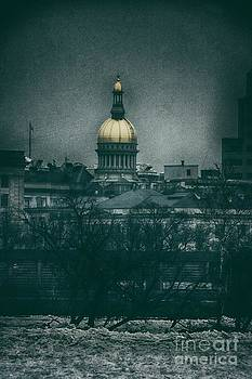New Jersey State House by Nicola Fiscarelli