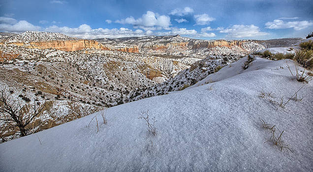New Mexico Snow by Chris Multop