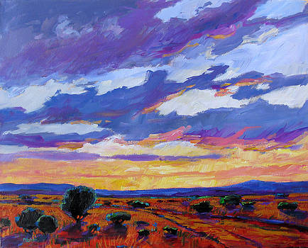 New Mexico Sunset by Patty Baker